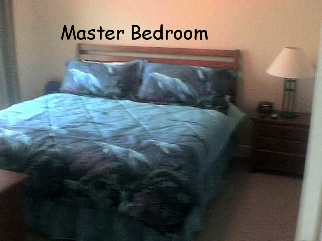 Gulf Shores Master Bedroom