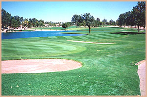 Vacation Rental Golf Course Arizona Sun Lakes